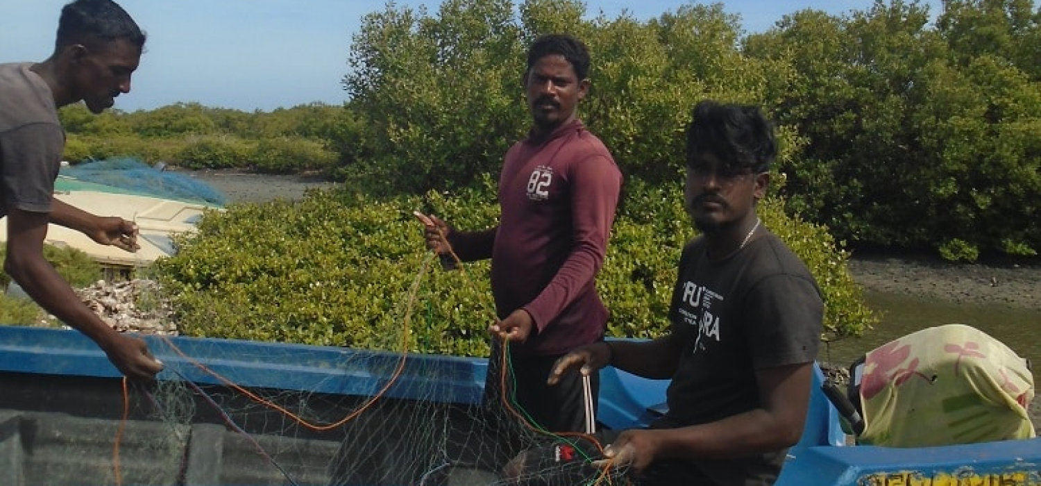 Arulventhan (brown t shirt) arranging the net with coworkers