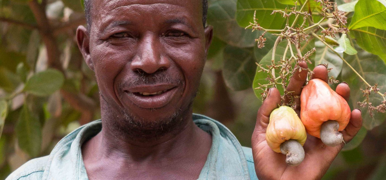 Bf boerengroep1 ouahara sidiké cashewboer 9002