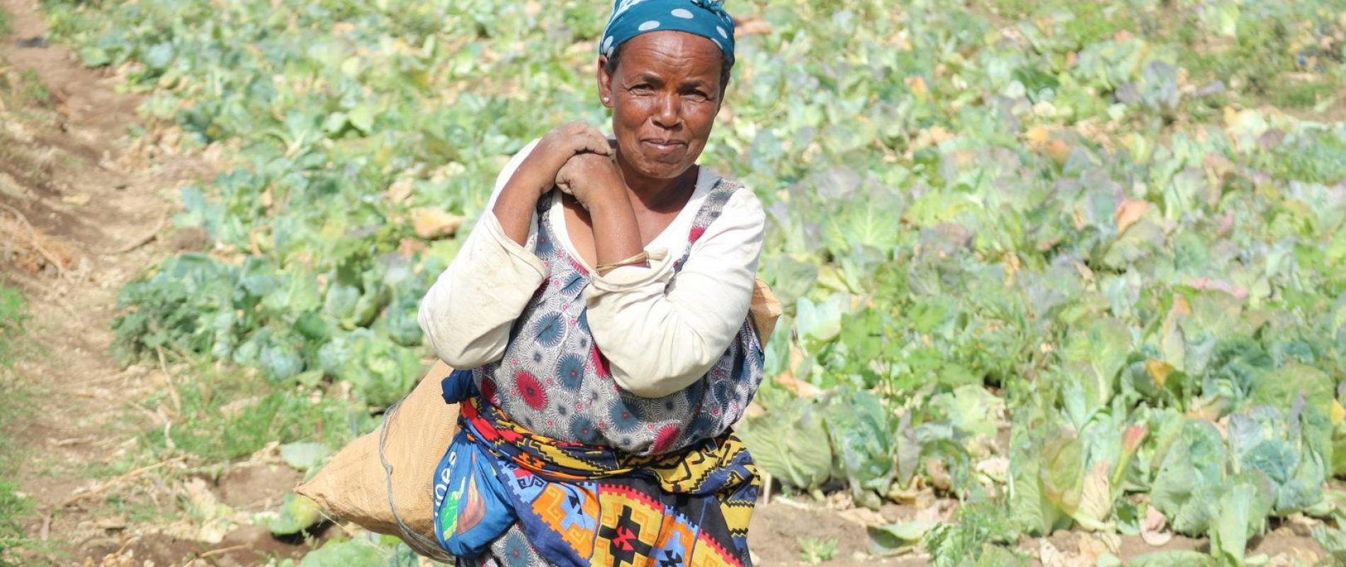 Waterpricing ethiopie